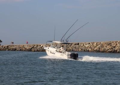 hooked sport fishing puerto vallarta
